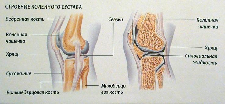 Valu liigestes ja seentes Kurparatov Andrey tahendab osteokondroosi