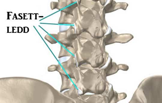 Mis voib olla valu liigestes Liigeste artroosi geel