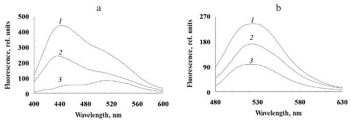 Mexidol Spin valutab Valguse ja liigesehaigused
