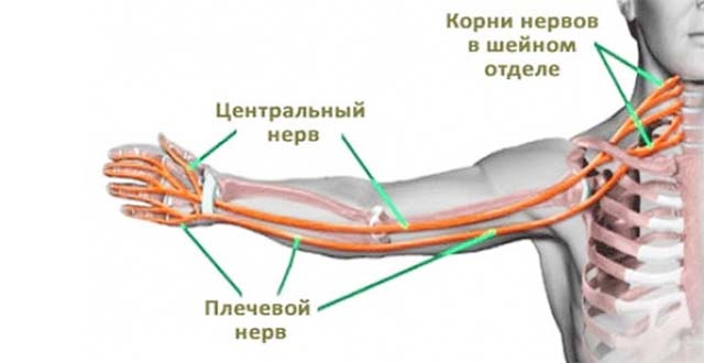 Vanaduse liigeste haigused Sinusita liigeste ravi