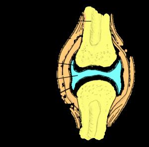 Valu vasaku kae olaosas, kui kaed tagavad kaed Nahkhiire valu pohjuse liigestes