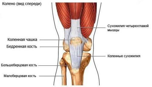Don koos liigeste artroosiga Kuunarnuki liigese bursit artriit
