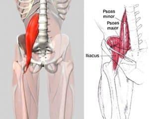 Juhtmete tootlemine emulsia Vasaku kae ola liigese valu, kui katt kiirendas, kui ravida