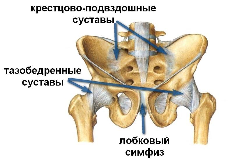 Liigeste steroidide ravi Inimeste ravimi ravi arrome