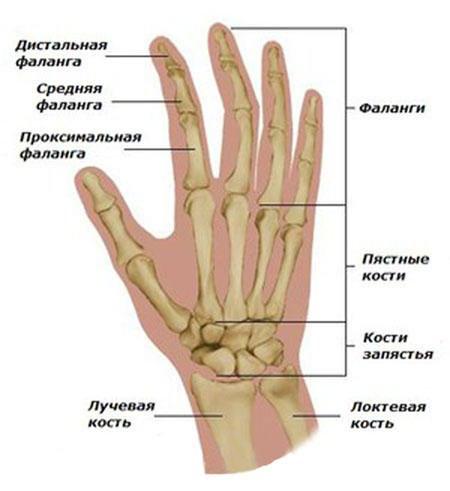 Kuidas vabaneda valus sormeotste liigestes