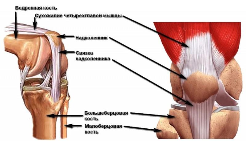 Perioodiline valu liigese