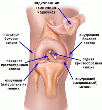 Krooniline artriit