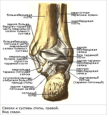 haiget ja paisuge jala liigesed Ravida valu ravi