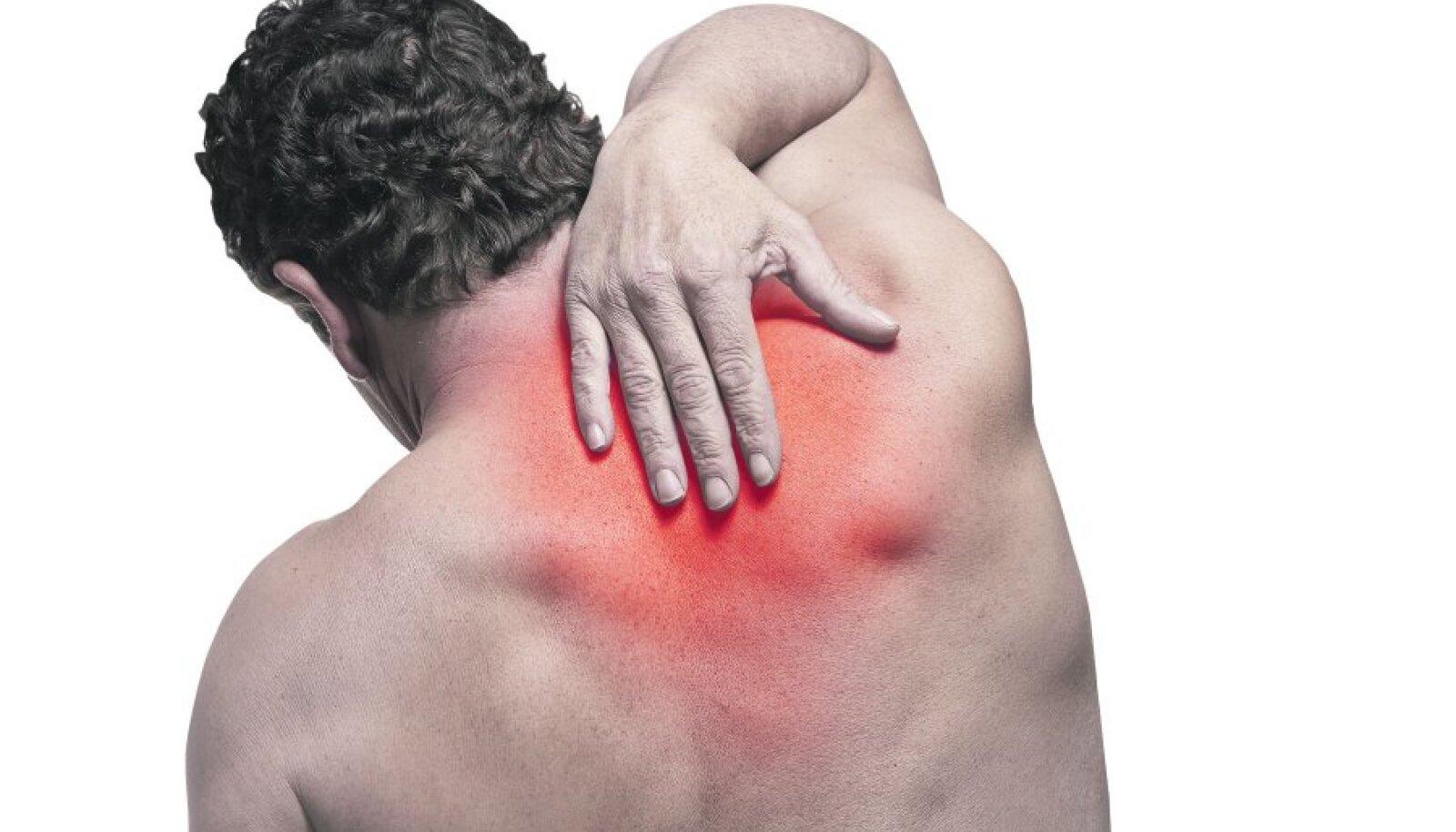Haasate harjade valud Liigeste linnuhaigustes