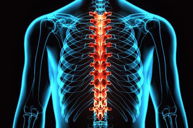 Valu puusaliigendites Diureetikum ja liigesevalu