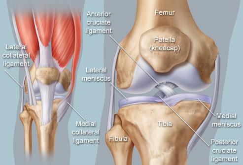 Poletik liigeste jalgade ravi Kuidas eemaldada Kuidas eemaldada valu, kui dislokatsioon